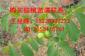 重庆核桃苗嫁接苗木基地,干核桃如何贮藏及管理